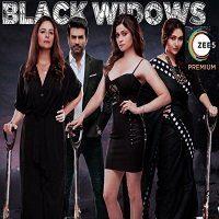 Black Widows (2020) Hindi Season 1 Complete Zee5 Watch Online HD Print Free Download