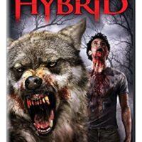 Download Hybrid (2007) Dual Audio {Hindi-English} 480p [300MB] || 720p [850MB]
