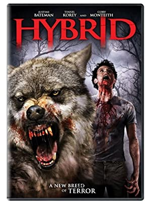 Download Hybrid (2007) Dual Audio {Hindi-English} 480p [300MB] || 720p [850MB]