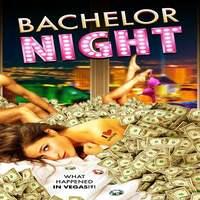 Bachelor Night (2014) English 720p | 480p BluRay x264