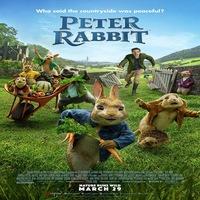 Peter Rabbit 2018 Hindi Dual Audio 720p | 480p BluRay x264 Esub
