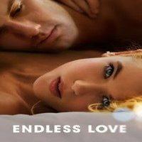 Download Endless Love (2014) Dual Audio (Hindi-English) 480p [345MB]    720p [970MB]    1080p [2GB]