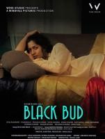 Black bud (2021) Hindi 720p   480p WEB-HD x264 Esub