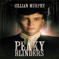 Peaky Blinders (2013) S02 English NF Series x264 ESub