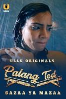 Palng Tod (Sazaa Ya Mazza) 2021 Hindi Series 720p   480p WEB-HD x264