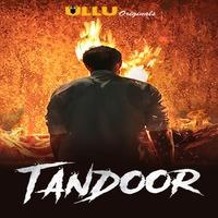 Tandoor 2021 Hindi Series 720p | 480p WEB-HD x264 Esub