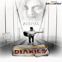 Diaries 2021 ShotFlix Short Film 720p | 480p WEB-HD x264